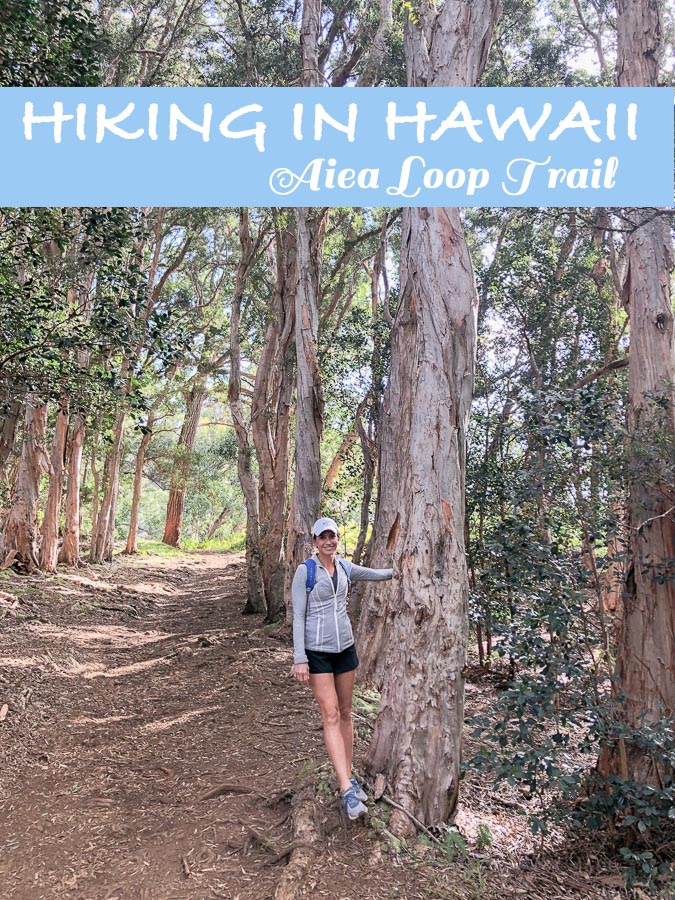 Hiking in Hawaii - Best Hikes in Hawaii - Hiking in Honolulu Hawaii - Best Trails in Hawaii - Hawaii Hiking Trails - Hawaii Hikes Oahu - Aiea Loop Trail Oahu - Kid Friendly Hikes - Hiking with Kids Hawaii