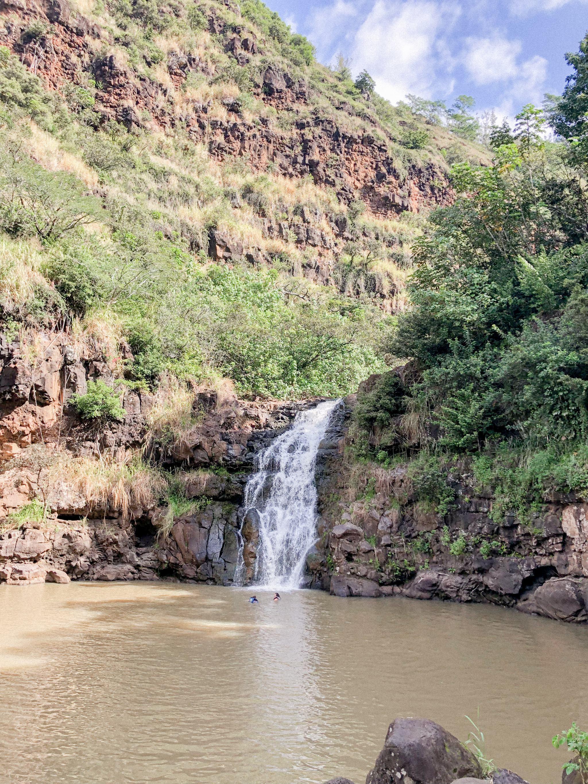 Hiking in Hawaii - Best Hikes in Hawaii - Hiking in Honolulu Hawaii - Best Trails in Hawaii - Hawaii Hiking Trails - Hawaii Hikes Oahu - Waimea Valley Trail Oahu - Kid Friendly Hikes - Hiking with Kids Hawaii - Waimea Falls