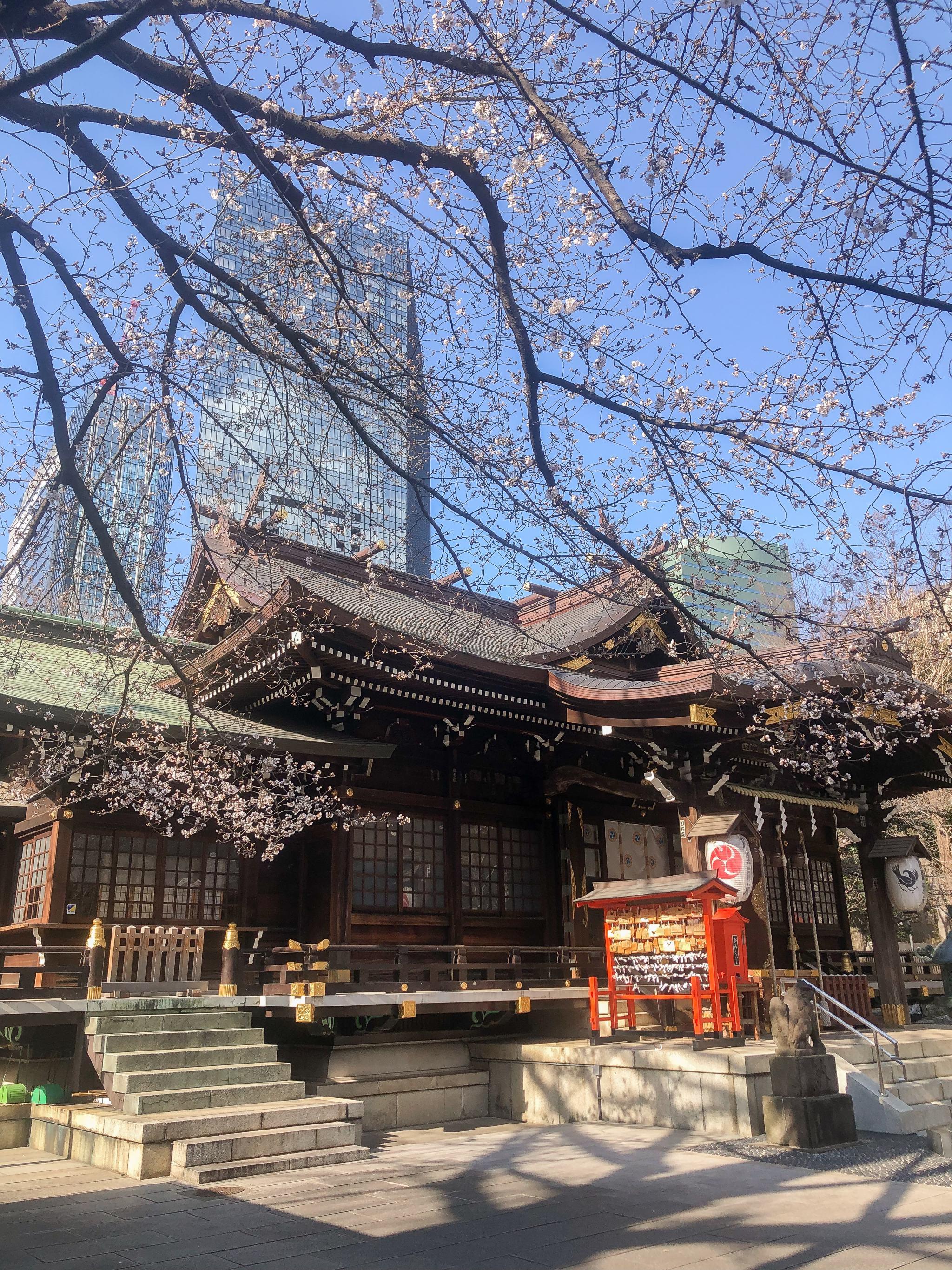 Shinjuku Chuo Park shrine - shrine in Tokyo - shinjuku shrine