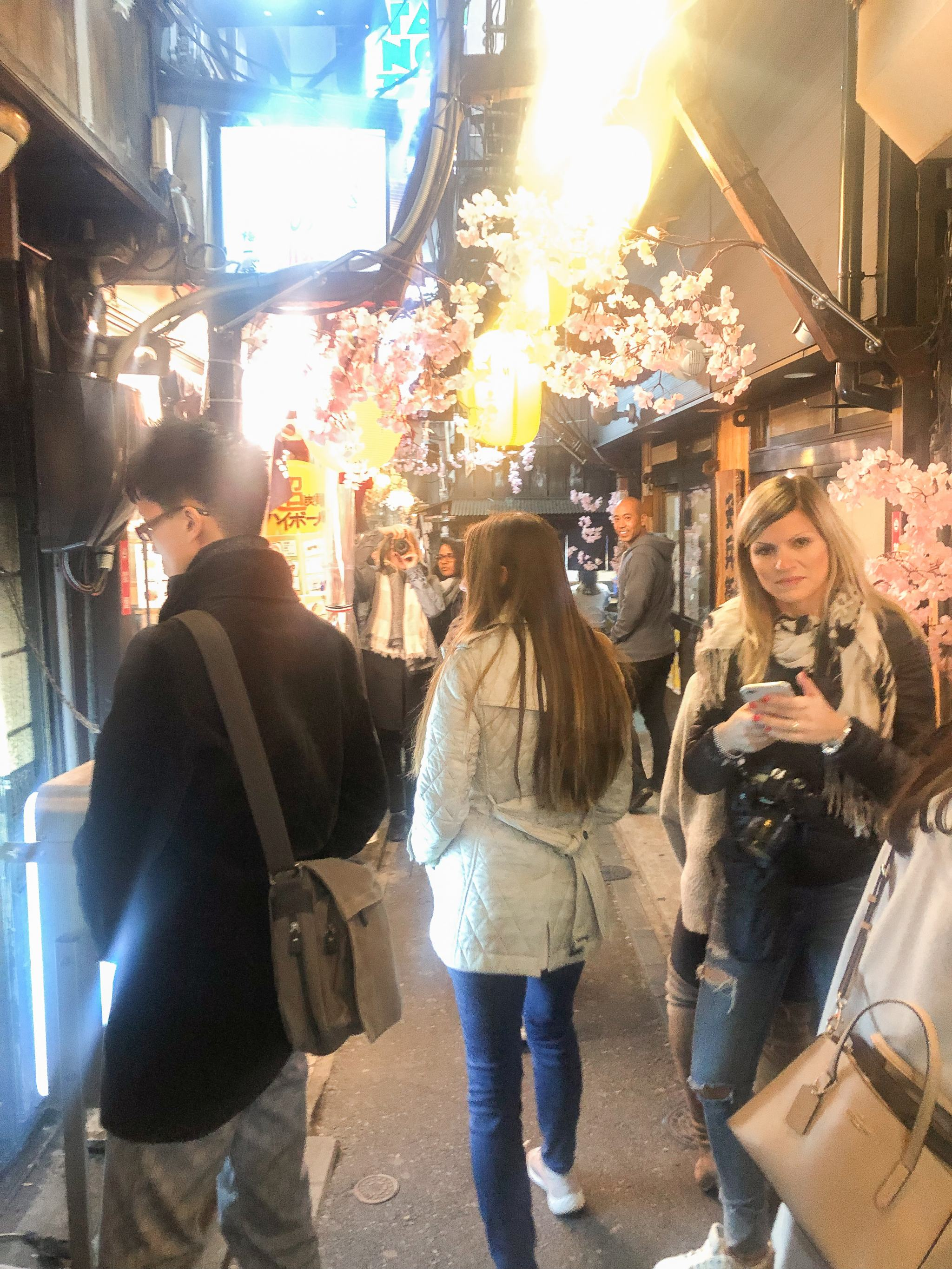 Tokyo - traveling in Tokyo - what to see in Japan - Meguro River Cherry Blossoms - shinjuku omoide yokocho alley