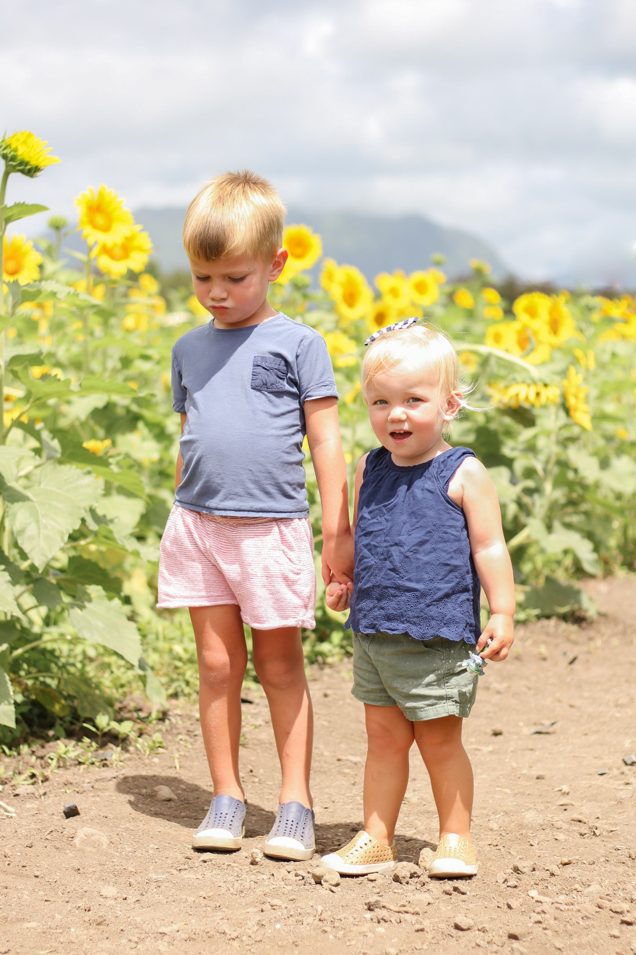Waimanalo Country Farms - Hawaii - things to do in Hawaii - traveling in Hawaii - hawaii with kids - oahu with kids - sunflower field - sunflowers in hawaii - toddler style - toddler boy style - toddler girl style