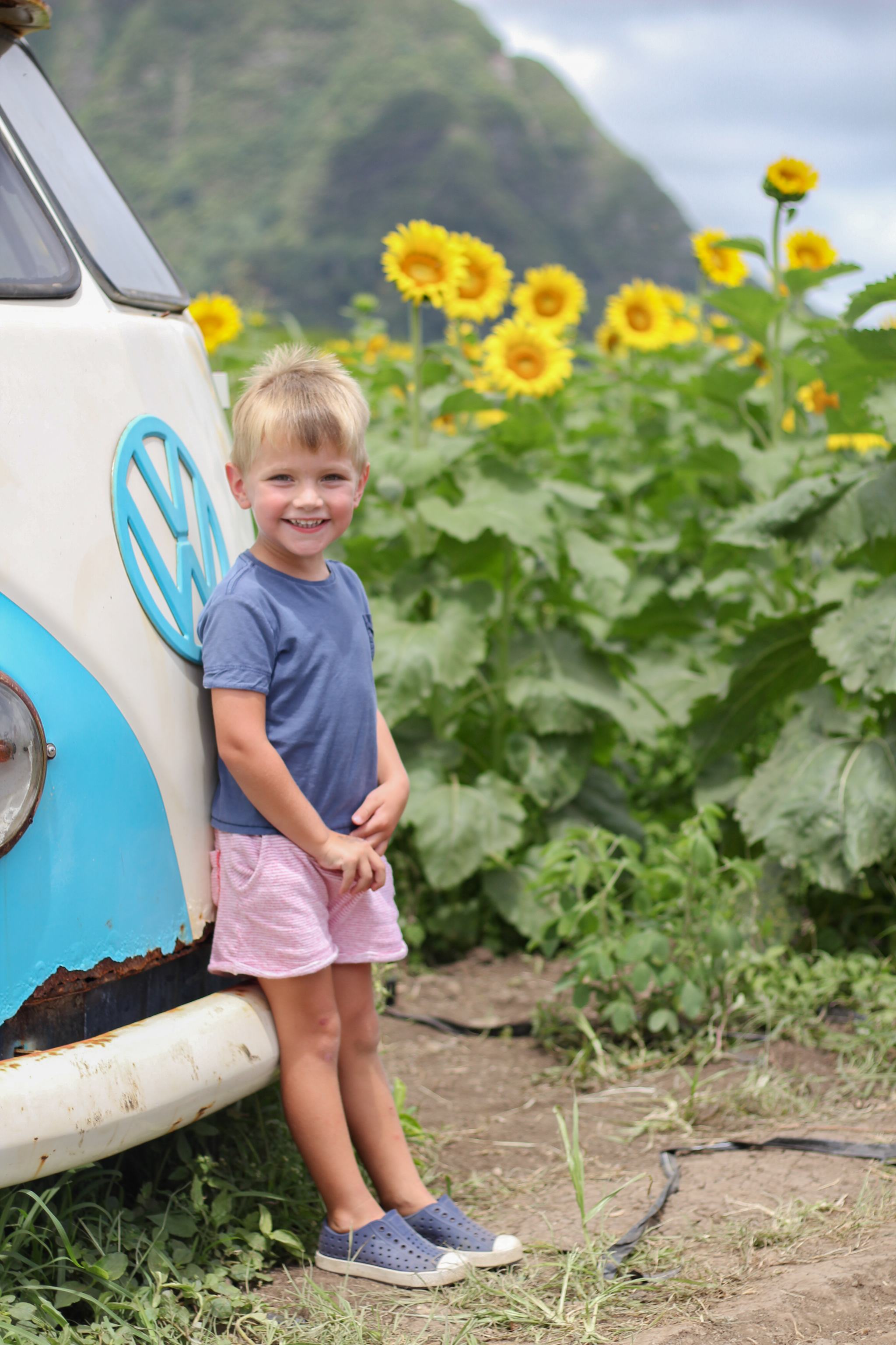 Waimanalo Country Farms - Hawaii - things to do in Hawaii - traveling in Hawaii - hawaii with kids - oahu with kids - sunflower field - sunflowers in hawaii - toddler style - toddler boy style