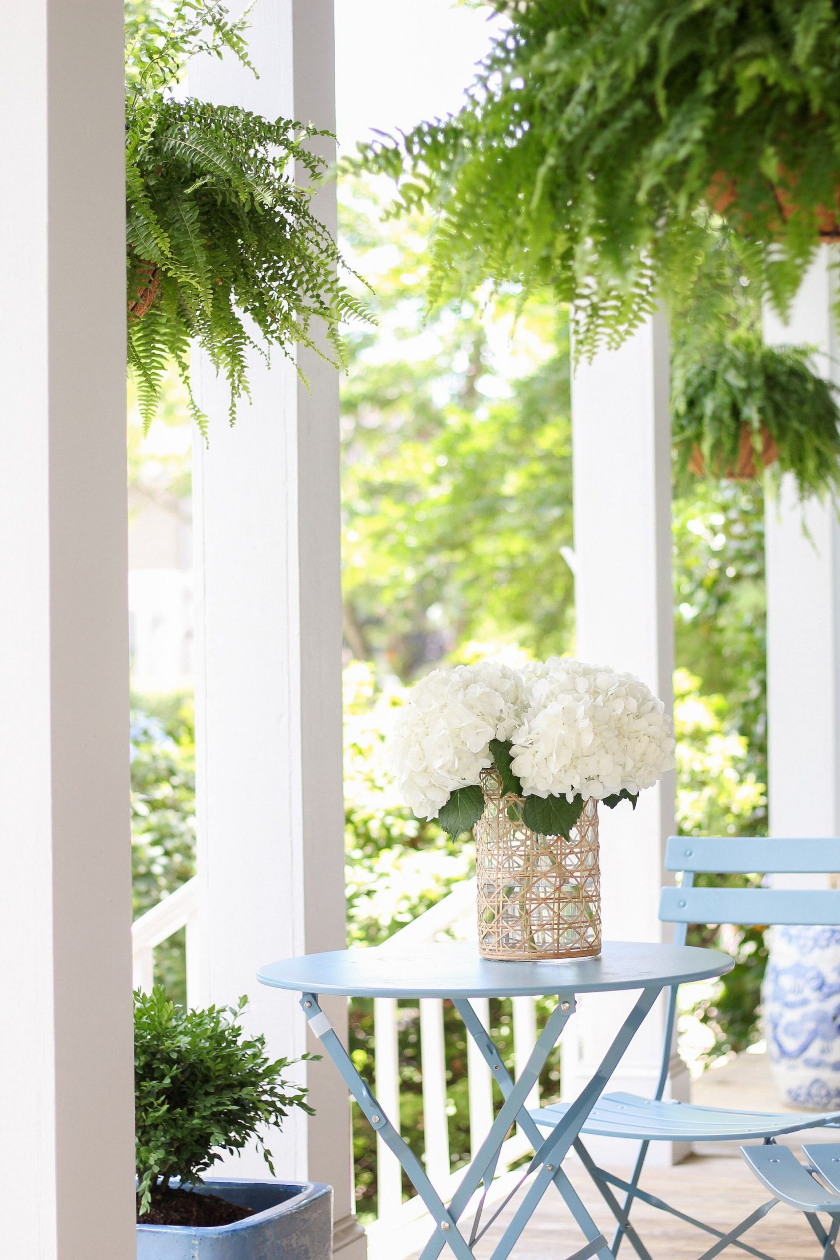 southern porch with hanging ferns