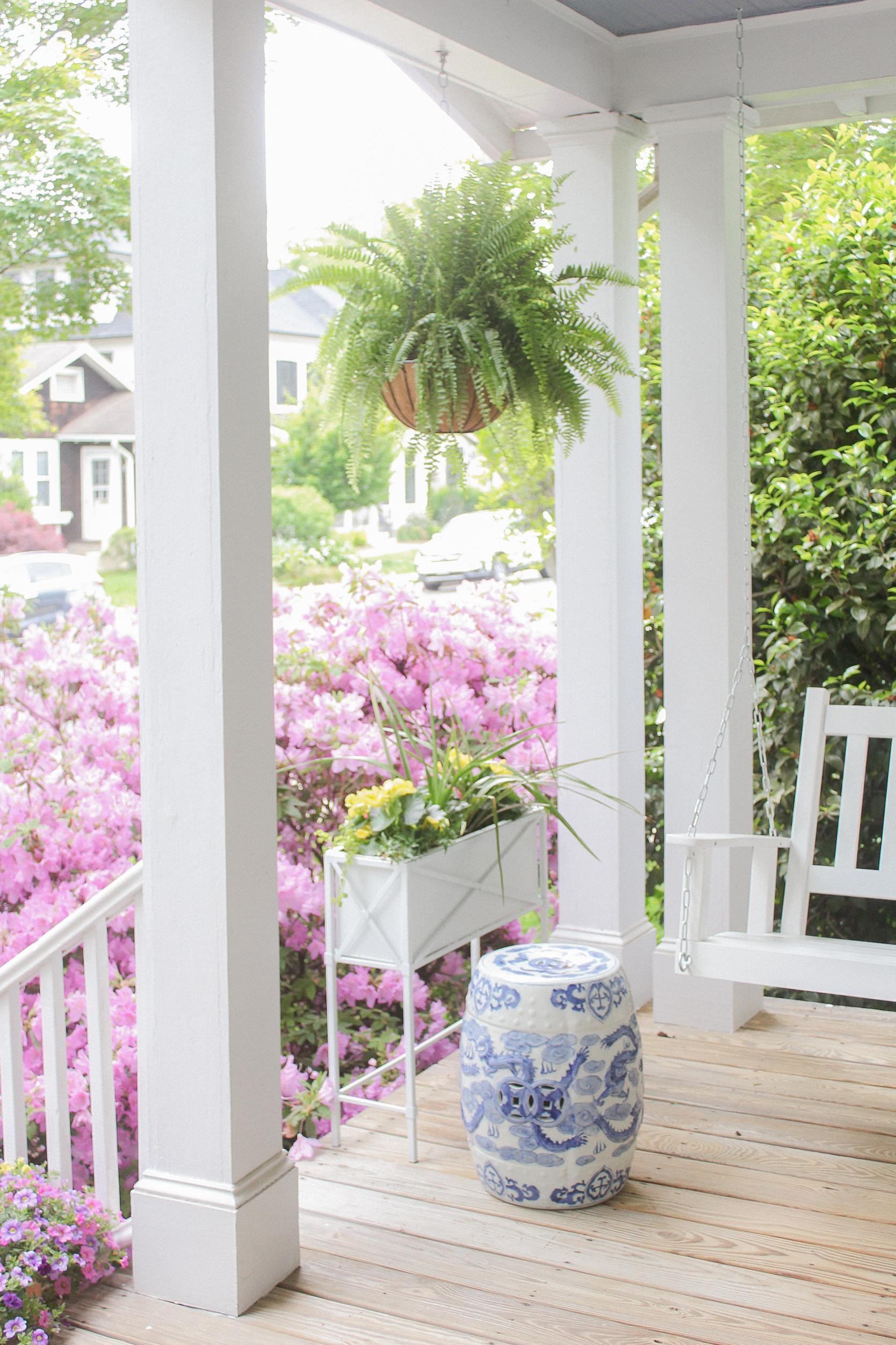 hanging fern porch